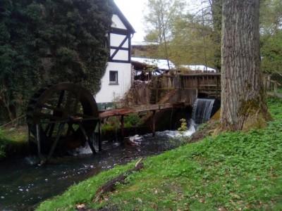 2017 Mai Bremsdorfer Mühle